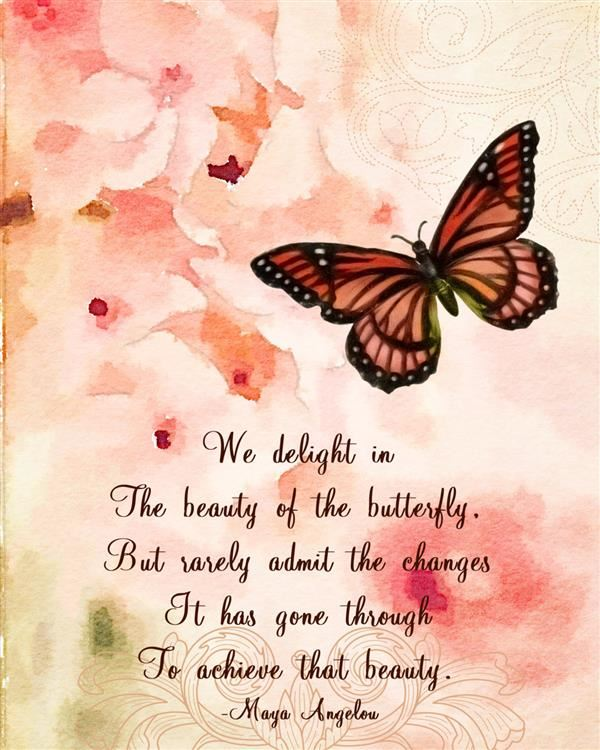 Butterfly Quote Maya Angelou